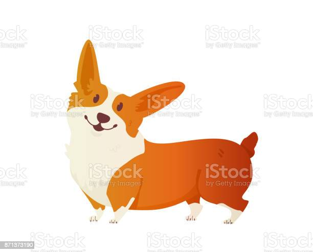 Happy dog welsh corgi the style flat vector id871373190?b=1&k=6&m=871373190&s=612x612&h=etyhsu9kmvttlpqz 8mlqnfu7rxxwy7xkatxv6qx5um=