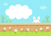rabbit,bunny,nature,fence,flowers,sky,cloud,spring,holiday,Easter