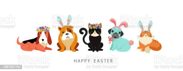 Happy easter card dogs and cats wearing bunny costumes holding basket vector id1097507702?b=1&k=6&m=1097507702&s=612x612&h=5bqemaadpffvvjlb gga4fifiynwab4j0n1vq9hl6u8=
