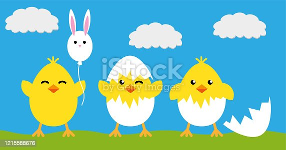 Happy Easter eggs chicks sign poster, flat icon on green blue background, vector and illustration template
