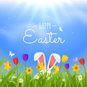 Happy easter greeting card. Easter rabbit ears sticking out of the grass vector illustration. Green lawn with spring flowers against the sky. Bright natural background. Eps 10.