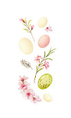 Happy Easter vector watercolor hand painted greeting card. Banner with eggs, flowers and feathers isolated on a white background.