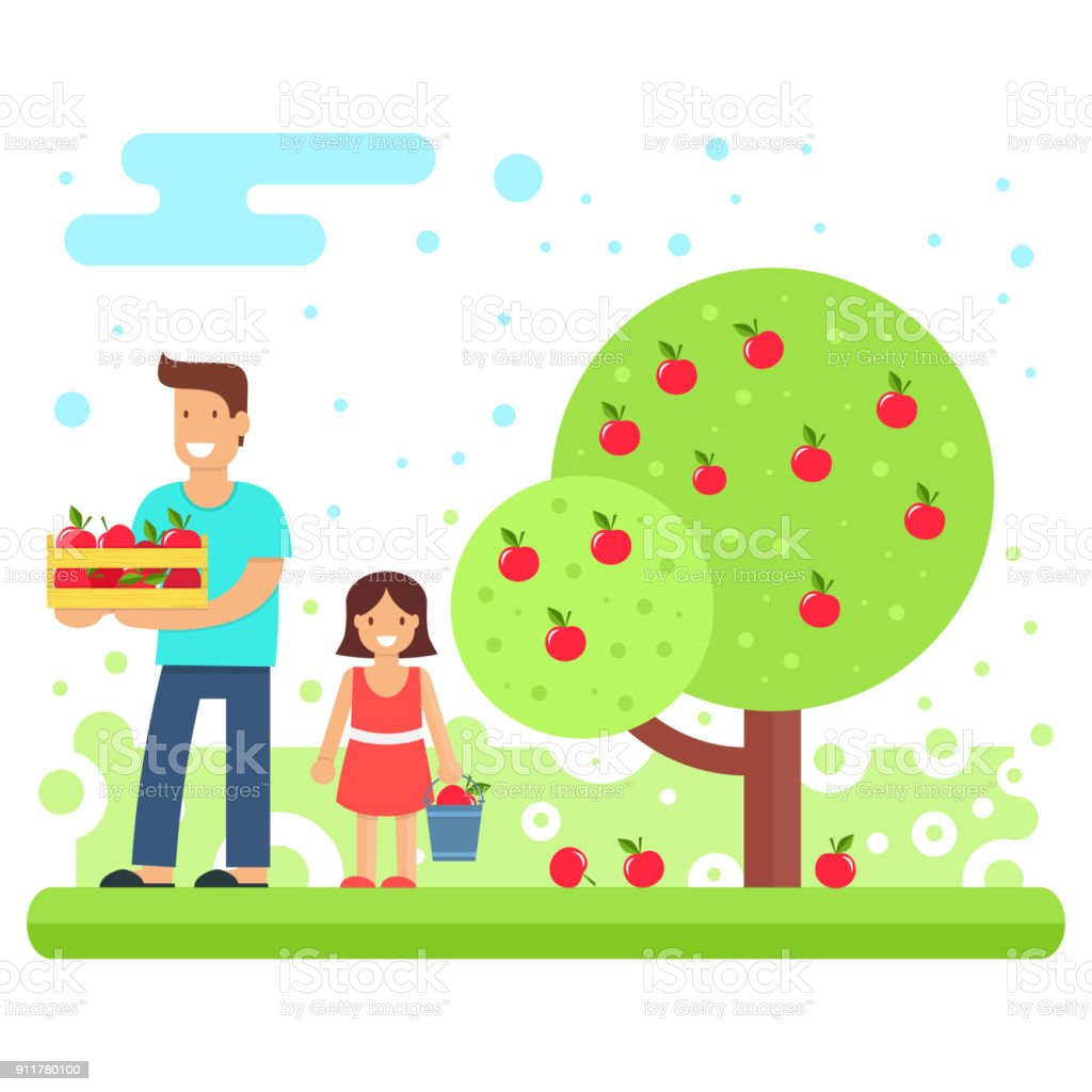 A happy family collects apple crops vector art illustration