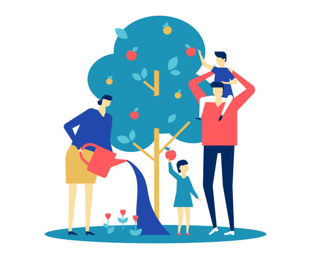 Happy family - flat design style colorful illustration Happy family - flat design style colorful illustration on white background. A bright composition with young parents, wife and husband standing together around apple tree, watering it, picking fruit picking harvesting stock illustrations