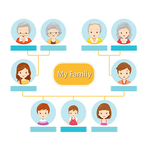 38 Family Tree Diagram Illustrations Royalty Free Vector Graphics Clip Art Istock Simply open one of the tree diagram templates included, input your information and let smartdraw do the rest. https www istockphoto com illustrations family tree diagram