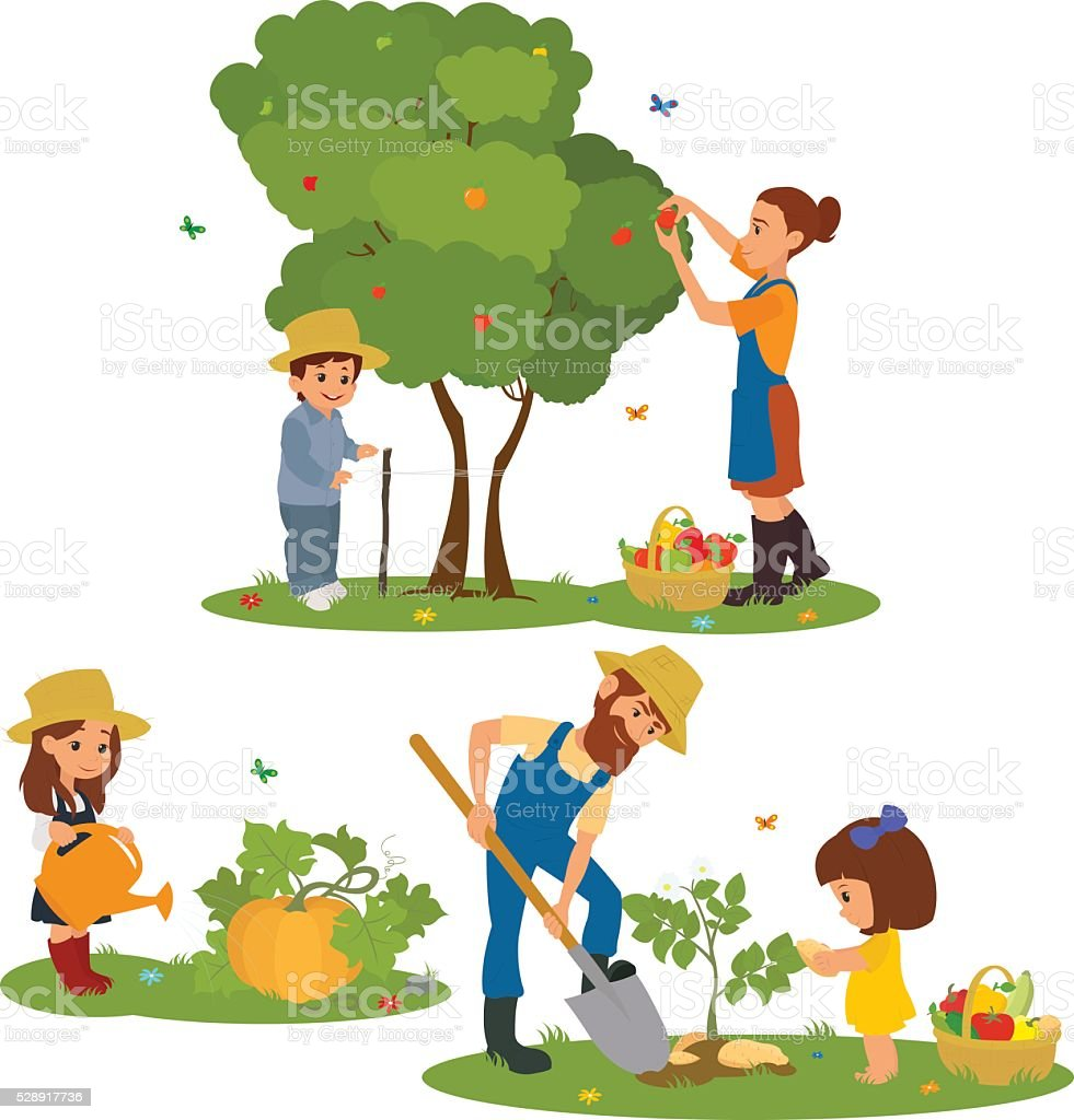 Happy  family with vegetables harvest in garden vector art illustration