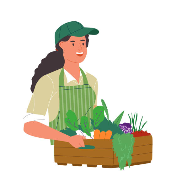 illustrazioni stock, clip art, cartoni animati e icone di tendenza di happy farmer woman with organic vegetable box - mercato frutta donna