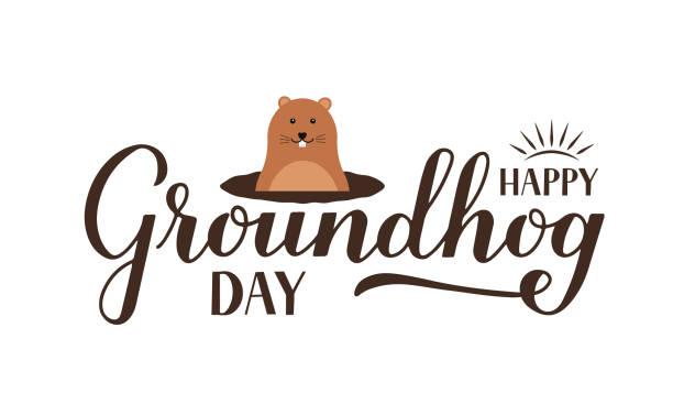 ilustraciones, imágenes clip art, dibujos animados e iconos de stock de feliz día de la marmota caligrafía a mano con linda marmota de dibujos animados aislada en blanco. plantilla vectorial para tarjeta de felicitación, cartel tipográfico, banner, volante, camiseta, pegatina, etc. - groundhog day