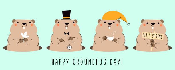 ilustraciones, imágenes clip art, dibujos animados e iconos de stock de feliz día de la marmota. tarjeta con cuatro lindas marmotas. diseño para tarjeta de felicitación de impresión, banner, cartel. - groundhog day
