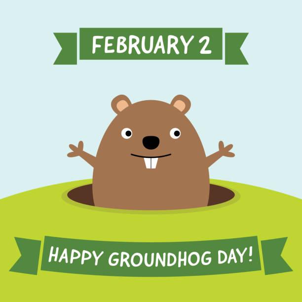 ilustraciones, imágenes clip art, dibujos animados e iconos de stock de feliz día de la marmota, tarjeta de felicitación - groundhog day