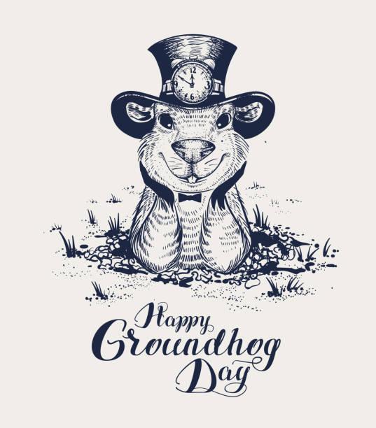 ilustraciones, imágenes clip art, dibujos animados e iconos de stock de feliz día de la marmota letras texto para tarjeta de felicitación. marmot divertido sombrero sale de agujero y espera - groundhog day