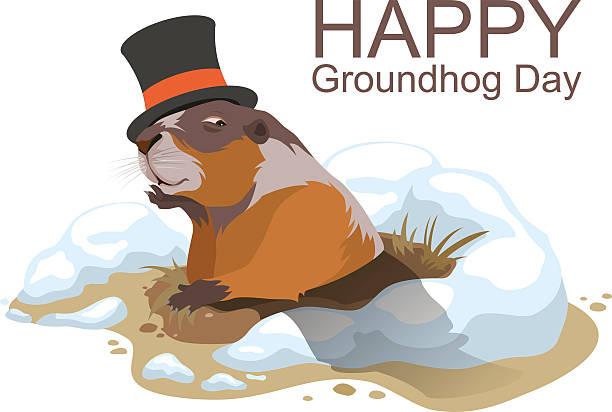 ilustraciones, imágenes clip art, dibujos animados e iconos de stock de feliz groundhog día. marmota climbed de orificio pasante - groundhog day