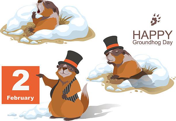 ilustraciones, imágenes clip art, dibujos animados e iconos de stock de feliz groundhog día. marmota retención de febrero de 2 - groundhog day