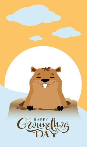 ilustraciones, imágenes clip art, dibujos animados e iconos de stock de tarjeta de felicitación de texto de feliz día de la marmota. marmot salió del agujero - groundhog day