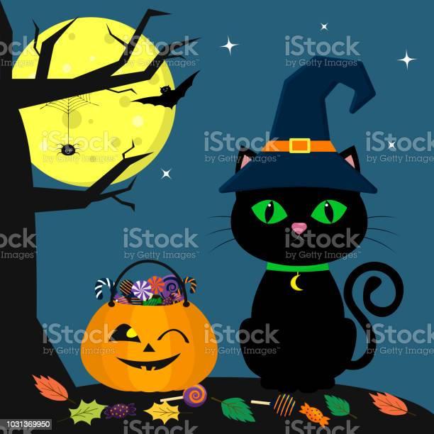 Happy halloween a halloween cat in a witch hat sits next to a pumpkin vector id1031369950?b=1&k=6&m=1031369950&s=612x612&h=awr33a ypuslwrx5xw2zy7okuxtum7hvenejcgma qo=