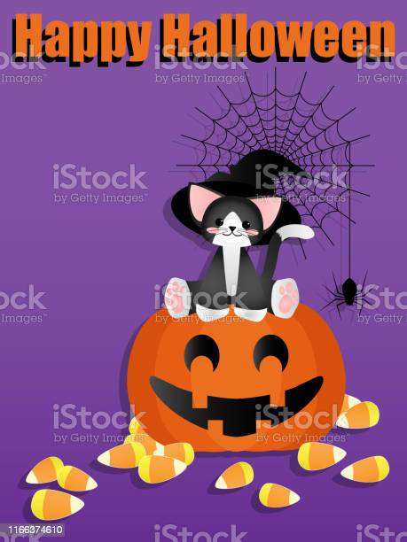 Happy halloween background with cute cat have witch hat sitting on vector id1166374610?b=1&k=6&m=1166374610&s=612x612&h=pmwka40j4ml26ttcigy7o7dtw9lh5blx7kzhkoraq3q=