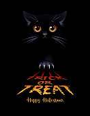 Halloween greeting card. Trick or Treat. Black cat on the black background. Vector illustration.