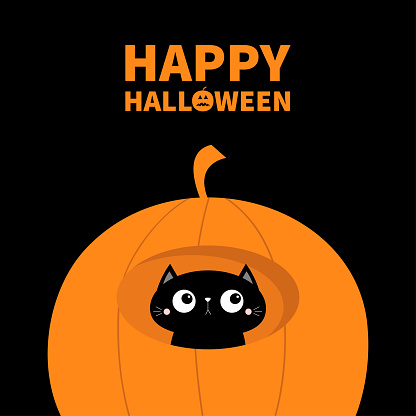 Happy Halloween. Cat face head inside pumpkin. Cute cartoon character. Kawaii baby animal. Boo. Notebook cover, greeting card, sticker print. Flat design. Isolated. Orange background.