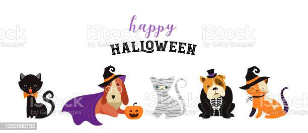 Happy halloween cats and dogs in monsters costumes halloween party vector id1032000732?b=1&k=6&m=1032000732&s=612x612&h=p57gont8wqc7ov9b oolasko  owbotx6r4 0g3aw7u=