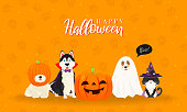 istock Happy Halloween Greeting Card Vector illustration. Cute cat and dogs in halloween pet costume 1181456104