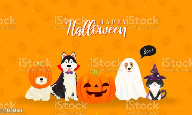 Happy halloween greeting card vector illustration cute cat and dogs vector id1181456104?b=1&k=6&m=1181456104&s=612x612&h=oqlsnjryncrrd5nsqrivu3jqqqgo47c2m ih5abzc6m=