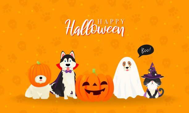 illustrazioni stock, clip art, cartoni animati e icone di tendenza di illustrazione vettoriale del biglietto d'auguri di halloween felice. simpatico gatto e cani in costume da animale domestico di halloween - halloween