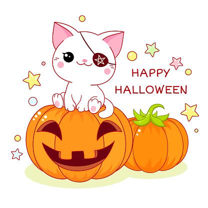 Happy Halloween. Greeting Halloween card with kawaii cat and pumpkin