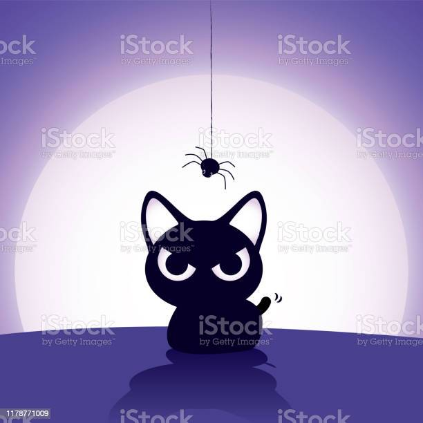 Happy halloween horror black cat with spiderweb above her head with vector id1178771009?b=1&k=6&m=1178771009&s=612x612&h=7hsodakwdsgw fza7n67jfxvhpktcfdzf pkc ghuua=