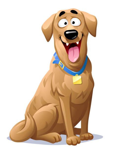 ilustrações de stock, clip art, desenhos animados e ícones de happy labrador retriever - happy dog