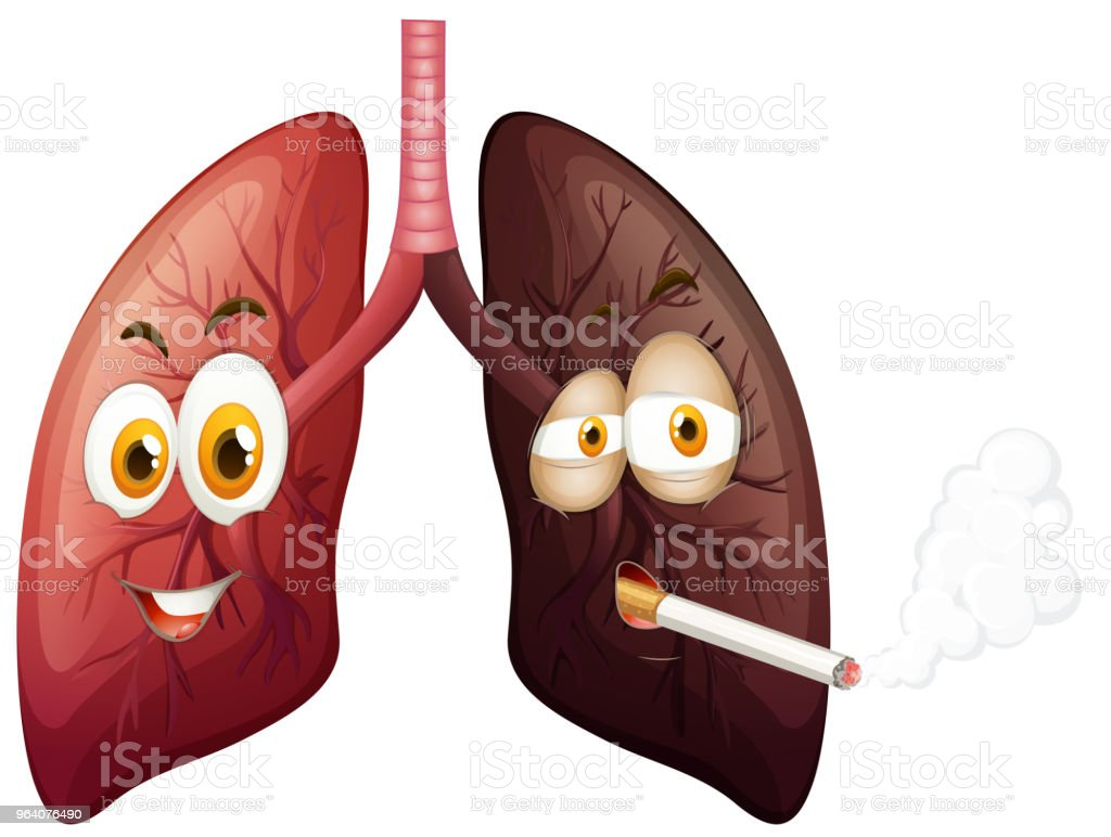 Happy lung and sad lung illustration - Royalty-free Art stock vector