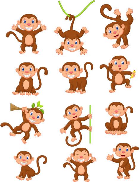 happy monkey cartoon-set - neuweltaffen und hundsaffen stock-grafiken, -clipart, -cartoons und -symbole