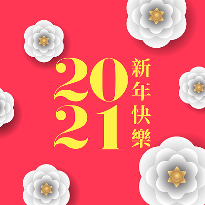 Happy New Year 2021 vector illustration in Chinese