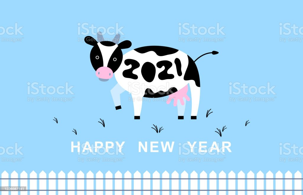 2021 Happy New Year Cow Vector Illustration 2021 Black And White Cow Chinese New Year Symbol Calendar Farm Design Blue Background 2021 Design For Your Greeting Card Stock Illustration Download Image Now Istock