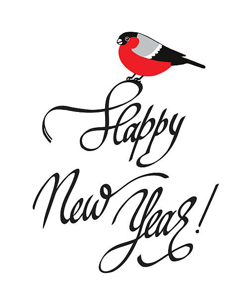 Happy New Year Greeting Card with bullfinch and handdrawn lettering. - Illustration vectorielle