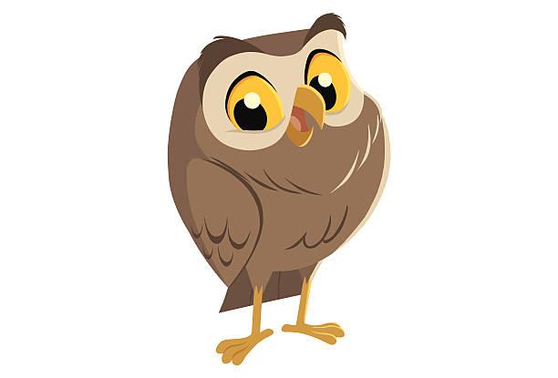 stockillustraties, clipart, cartoons en iconen met happy owl smiling - uil