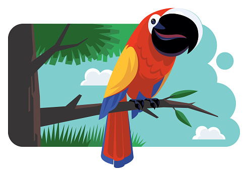 happy parrot standing on branch