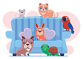 vector illustration of happy pets with sofa