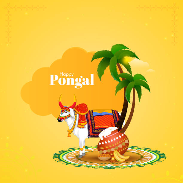 Happy Pongal Concept With Decorative Ox Character, Pongali Rice In Mud Pot, Sweet (Laddu), Banana And Palm Trees On Yellow Background. vector art illustration