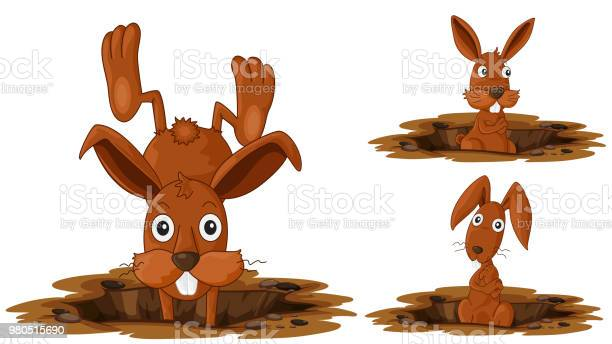Happy rabbit on white background vector id980515690?b=1&k=6&m=980515690&s=612x612&h=wfmrrltxsgdf07y8ysv7mhi2bwrqpgfwcter1yhrkju=