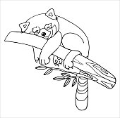 A happy red Panda is lying on a tree branch with its paws hanging down. Very happy and relaxed. Outline drawing by hand, black and white, linear, isolated on a white background. Coloring