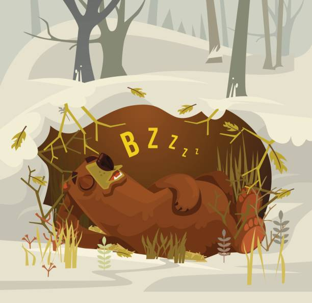 happy smiling bear character mascot sleeping and resting in his cave - hibernation stock illustrations, clip art, cartoons, & icons