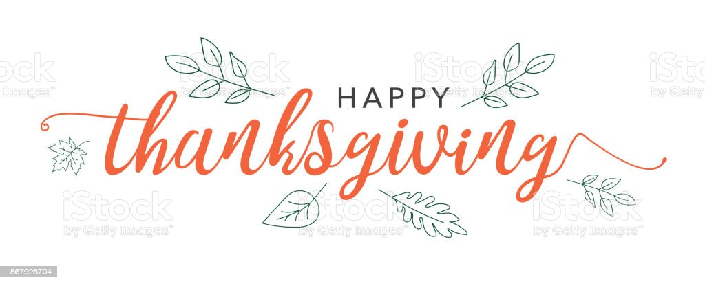 Happy Thanksgiving Calligraphy Text with Illustrated Green Leaves Over White Background vector art illustration