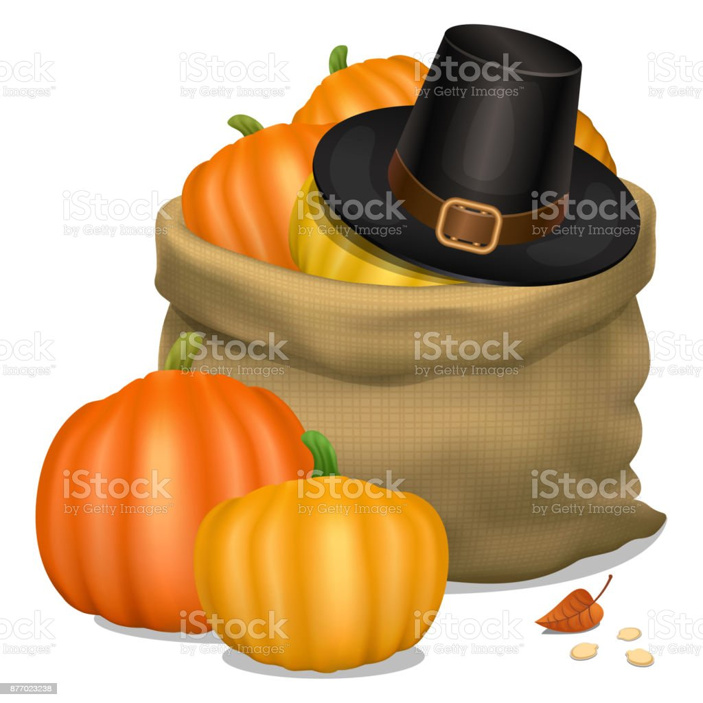 Happy Thanksgiving card. Piligrim hat with bag full orange pumpkins. Vector illustration. vector art illustration