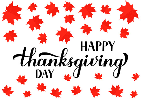 Happy Thanksgiving Day calligraphy hand lettering with red Canadian maple leaves. Holiday in Canada.  Vector template for greeting card, typography poster, banner, flyer, sticker, t-shirt