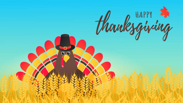 happy thanksgiving day flat style design poster vector illustration with turkey in the field, text and autumn leaves. turkey with hat and colored feathers celebrate holidays! - thanksgiving turkey stock illustrations