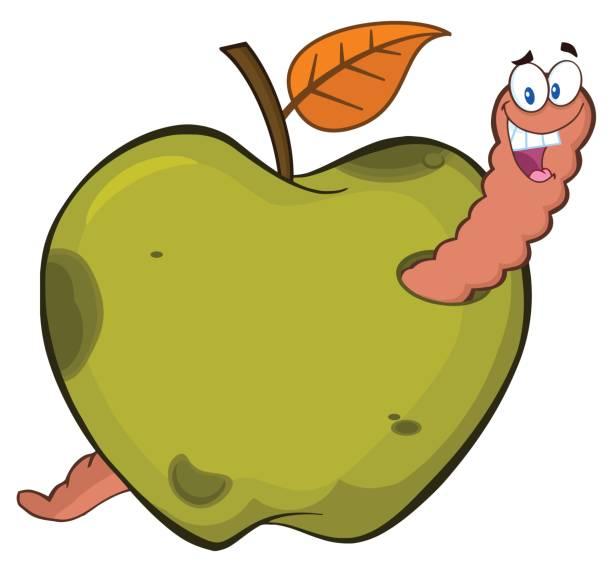 happy worm in a rotten green apple fruit cartoon mascot character design - rotten apple stock illustrations, clip art, cartoons, & icons