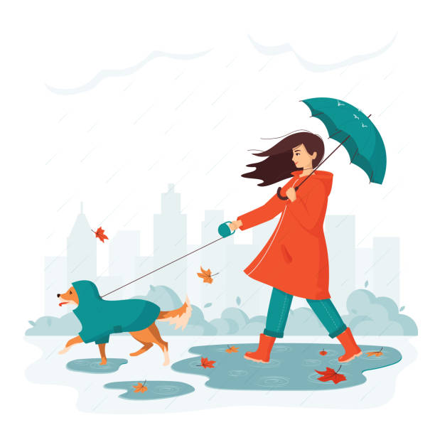 Happy young woman with umbrella walks a dog in a raincoat in city park in rainy autumn. Concept of outdoor activity in bad weather with a pet.