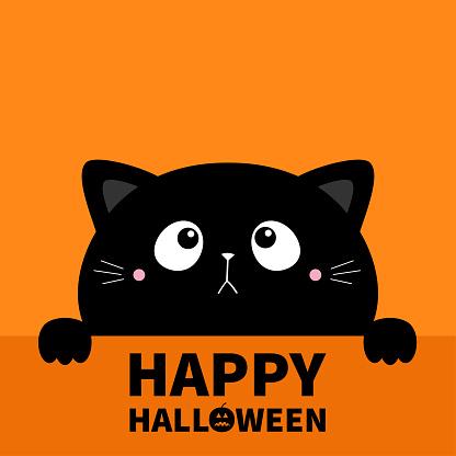 Hapy Halloween. Cat kitten kitty black silhouette holding paper. Paw print. Cute kawaii cartoon sad character. Baby greeting card tshirt notebook cover. Orange background. Flat design