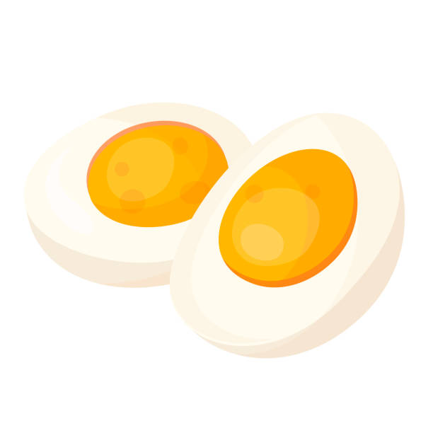 Hard boiled egg halves flat vector illustrations vector art illustration