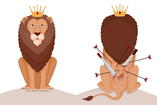 Hard to be lion king illustration. Proud animal king with crown stab in back his back pierced arrows and swords.